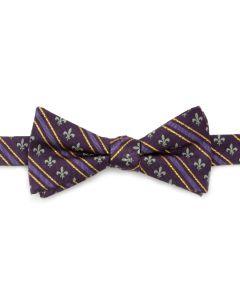 Mardi Gras Stripe Bow Tie
