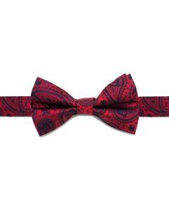 Darth Vader Paisley Big Boys' Silk Bow Tie